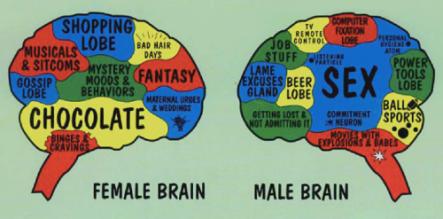 different brains