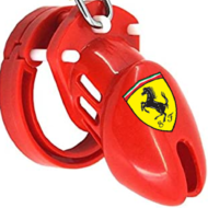 Ferrariguy